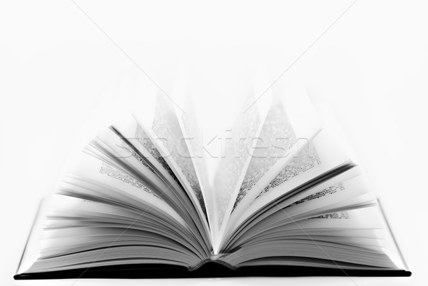 book Stock photo © guffoto