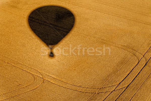 тень шаре полях лет пшеницы Сток-фото © guffoto
