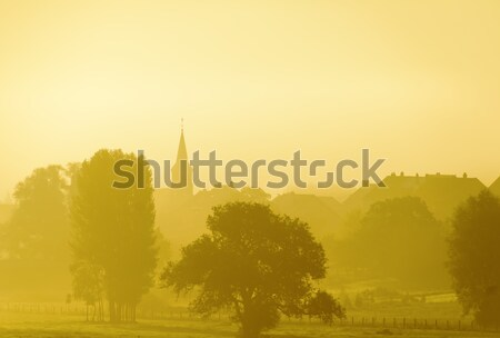 misty countryside Stock photo © guffoto