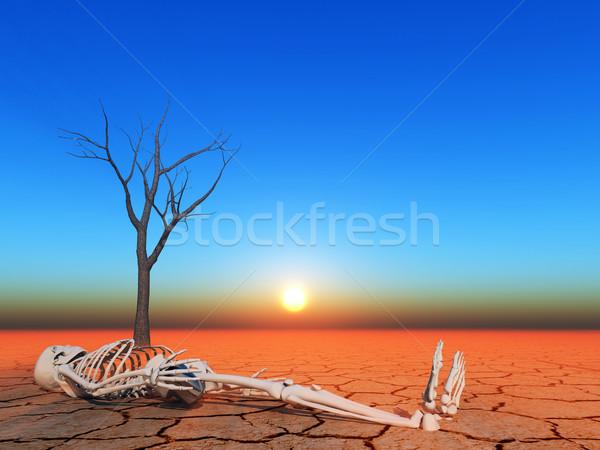 Apocalypse illustratie opwarming van de aarde woestijn schedel dode Stockfoto © guffoto