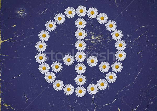 Flower power símbolo margaridas flor flores amor Foto stock © guffoto