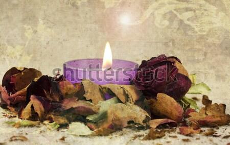 закрывается цветок свечу романтические лепесток сушат Сток-фото © guffoto