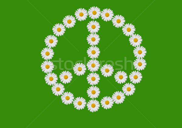 Paz amor símbolo margaridas flores flor Foto stock © guffoto