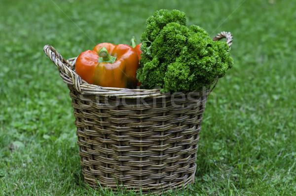 vegetable Stock photo © guffoto