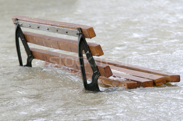 Deluge Stock photo © guffoto