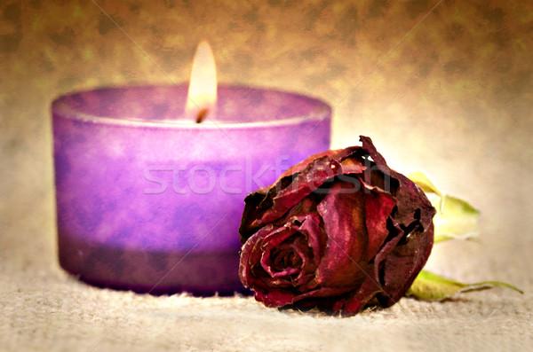 закрывается красную розу свечу холст эффект красный Сток-фото © guffoto