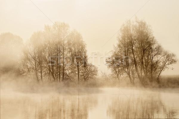 Tavacska kicsi hajnal ködös légkör fa Stock fotó © guffoto