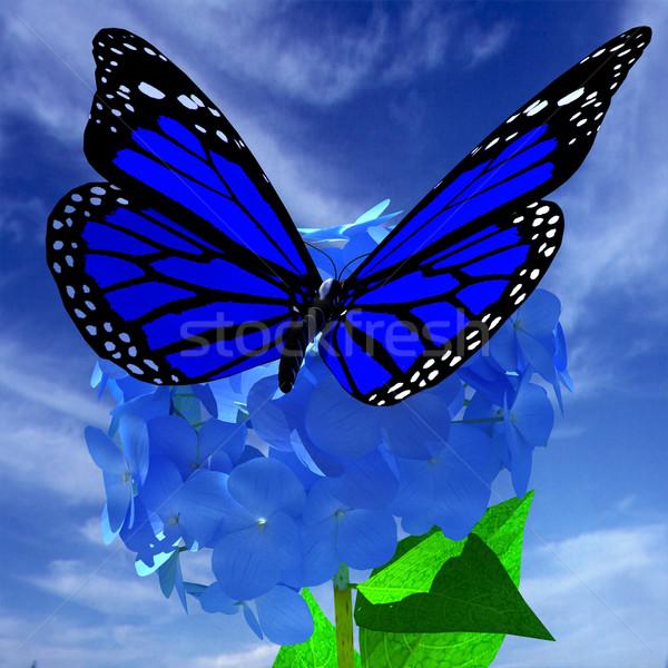Beautiful Ajisai Flower and butterfly Stock photo © Guru3D