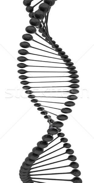 DNA struktury model biały technologii nauki Zdjęcia stock © Guru3D
