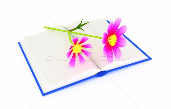 Csodálatos virág könyv védtelen tavasz terv Stock fotó © Guru3D