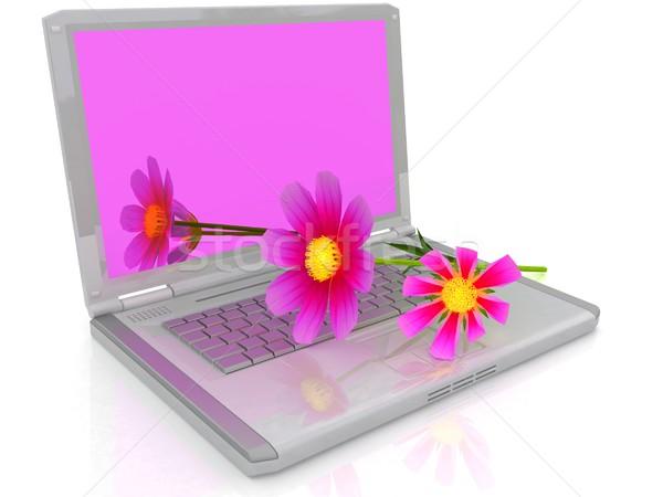 Bloem laptop witte business internet natuur Stockfoto © Guru3D