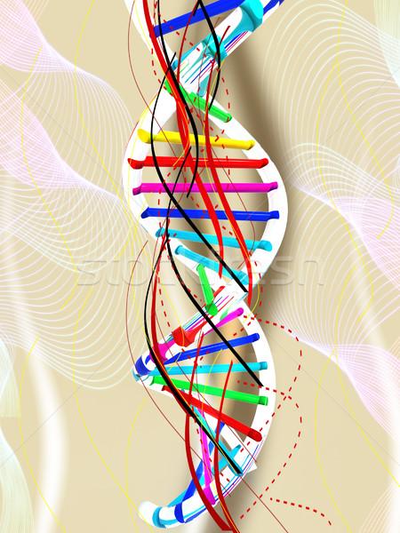 Dna estrutura modelo educação ciência químico Foto stock © Guru3D