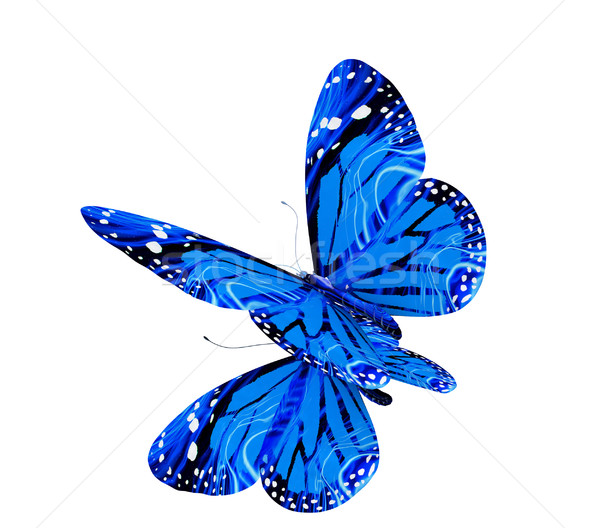 Vlinder witte natuur schoonheid zwarte plant Stockfoto © Guru3D