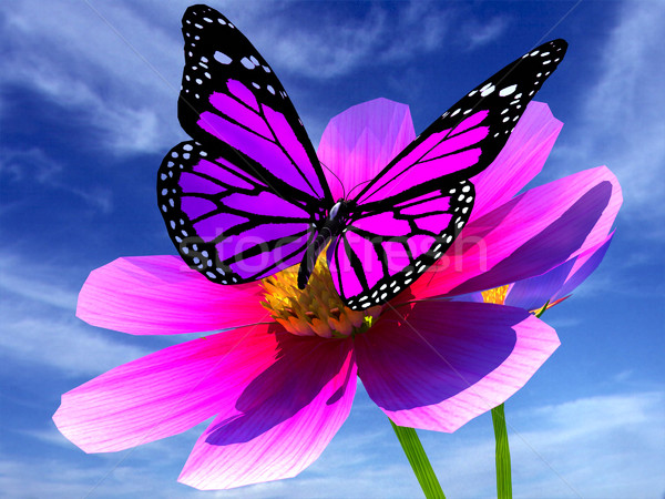 Beautiful Cosmos Flower and butterfly Stock photo © Guru3D
