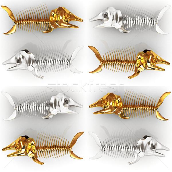 セット 3D 実例 魚 スケルトン 白 ストックフォト © Guru3D