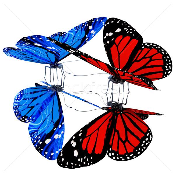 Butterflies Stock photo © Guru3D