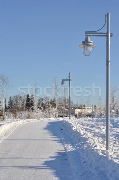 City Park Walking Path in Winter Stock photo © gwhitton