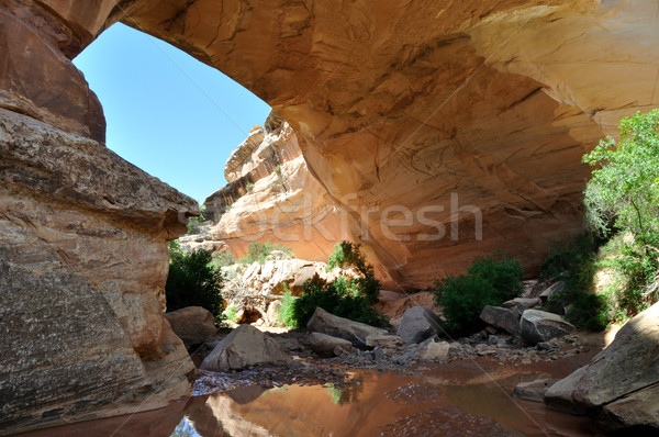 Kachina Natural Bridge - Southern Utah Stock photo © gwhitton