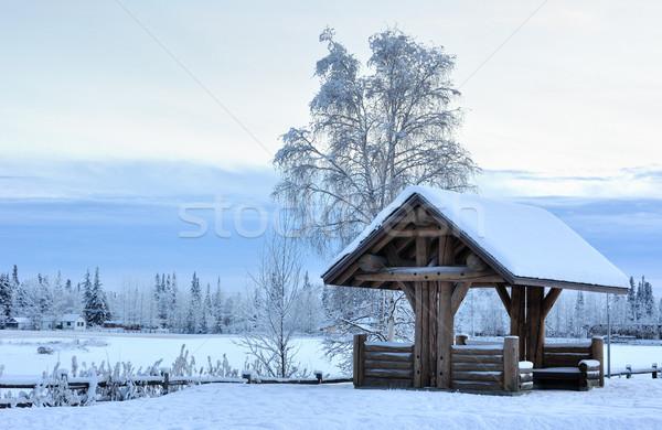 Alaska hiver ciel nuages bois forêt Photo stock © gwhitton