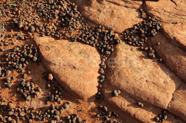 Sandstone and Pebble Background Stock photo © gwhitton