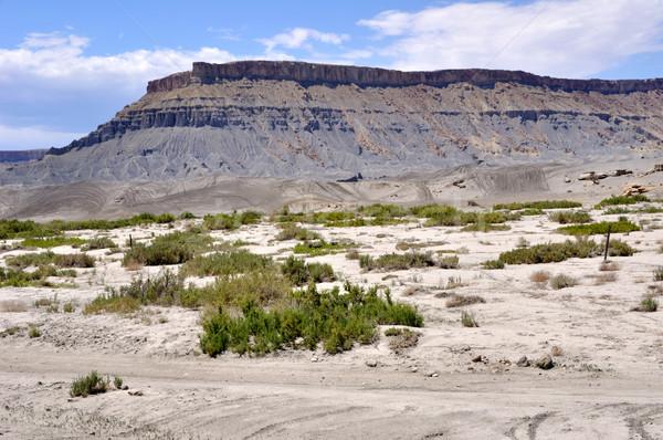 север Юта пустыне дороги пейзаж песок Сток-фото © gwhitton