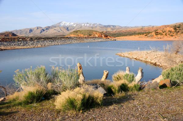 貯水池 公園 ユタ州 木材 風景 砂漠 ストックフォト © gwhitton