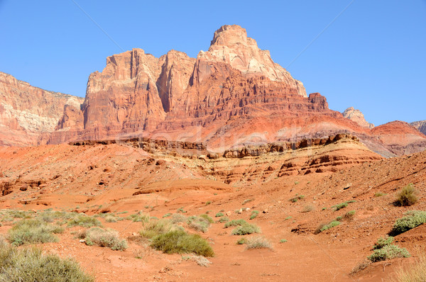 Vermilion Cliffs National Monument Stock photo © gwhitton