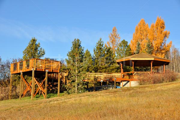 デッキ 木 秋 午前 木材 建設 ストックフォト © gwhitton