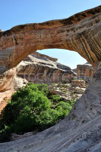Natuurlijke brug zuidelijk Utah landschap woestijn Stockfoto © gwhitton
