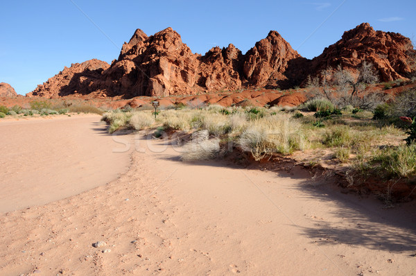 Wash in Valley of Fire State Park, Nevada Stock photo © gwhitton