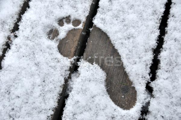 ślad pierwszy zimą śniegu wydruku Zdjęcia stock © gwhitton