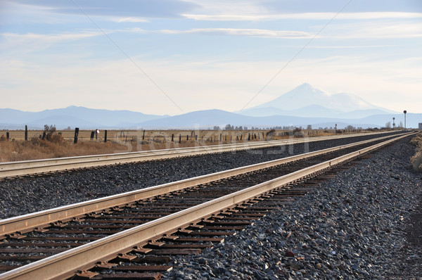 Railroad tracks with Mt. Shasta in Northern California  Stock photo © gwhitton
