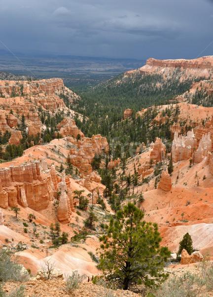 Oude indian kunst canyon zomer storm Stockfoto © gwhitton