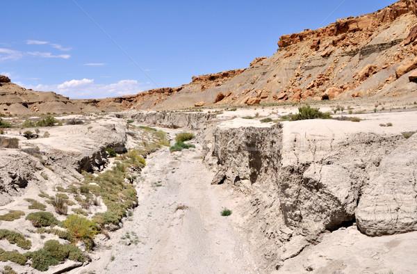 砂漠 公園 自然 青 赤 ストックフォト © gwhitton