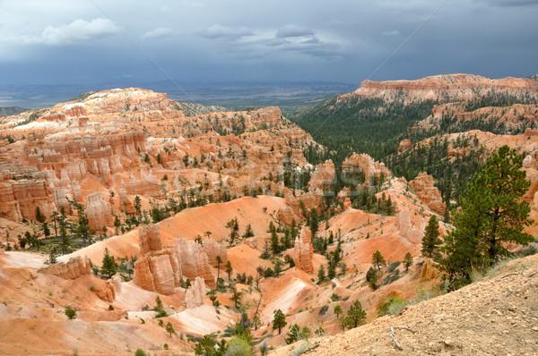 Kanion lata burzy chmury krajobraz drzew Zdjęcia stock © gwhitton