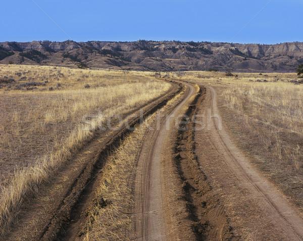 Ruts in dirt road Stock photo © Habman_18