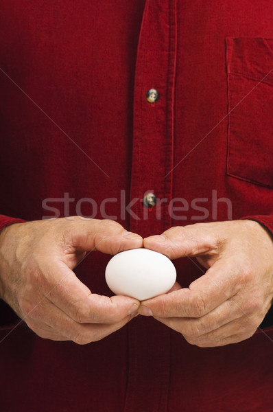 White egg held gently by man Stock photo © Habman_18