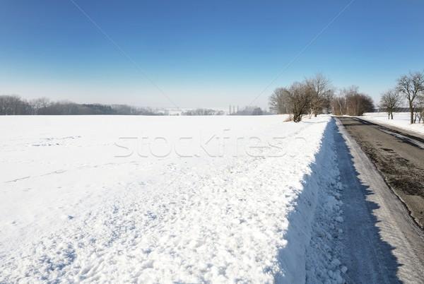 Landschap landelijk winterlandschap veld weg sneeuw Stockfoto © hamik