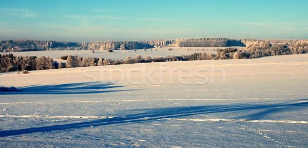 Winter scenery Stock photo © hamik
