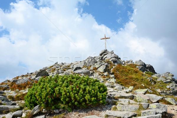 Krzyż szczyt górę wysoki niebo Zdjęcia stock © hamik