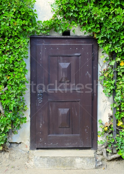 Velho porta medieval verde hera Foto stock © hamik