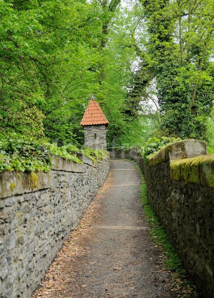 path in garden Stock photo © hamik