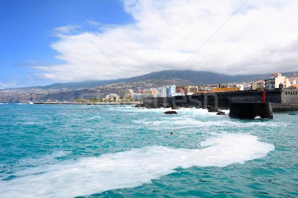 Puerto de la Cruz coast Stock photo © hamik