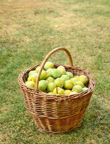 Kosár szilva tele egészséges friss citromsárga Stock fotó © hamik