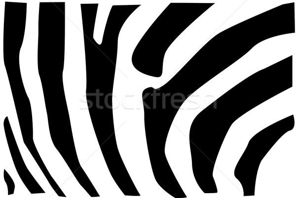 Zebra szőr minta részlet természet háttér Stock fotó © hamik