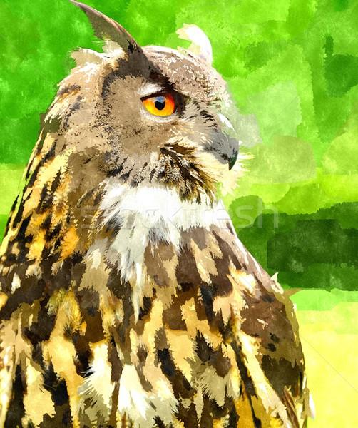 Aquarel schilderij oehoe digitaal gegenereerde vogel Stockfoto © hamik