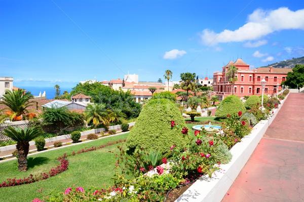 Jardim botânico botânico jardim la cidade tenerife Foto stock © hamik