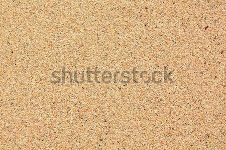 Areia textura escuro marrom praia natureza Foto stock © hamik