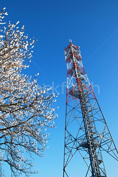 GSM tower Stock photo © hamik