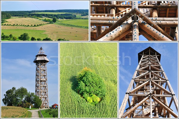 Nature collage Stock photo © hamik